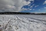 積雪の田園