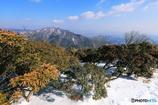 入道ヶ岳からの眺望