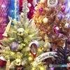 Joyeux Noël (フランス語)
