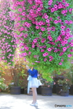 花園の天使