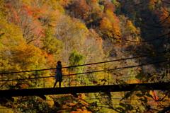 燃ゆる吊り橋