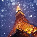 CANON Canon EOS 6Dで撮影した(#05 Snow Fantasy)の写真(画像)