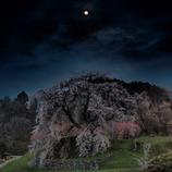月夜の又兵衛