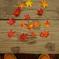 秋を並べる