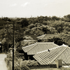 2011年竹富島