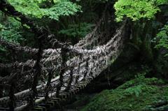深淵~奥祖谷二重かずら橋~