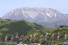 大山と鯉のぼり