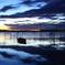 明と暗-印旛沼-