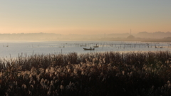 印旛沼・朝景 - 霧中のアングラー -