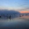 印旛沼・朝景 - 霧雲の水面 -