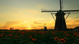 印旛沼・風車 - 迷夢のサンセット -