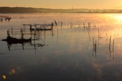 印旛沼・朝景 - 気嵐の朝 -