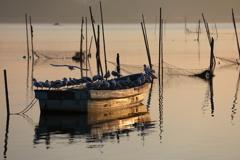 印旛沼・朝景 - 朝日のあたる舟 -