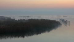 印旛沼・朝景 - 静寂の靄 -