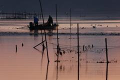印旛沼・朝景 - 朝漁 -