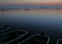 印旛沼・朝景 - 霧の夜明け -