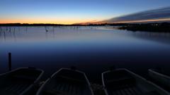印旛沼・朝景 - 静と動の共存 -