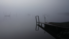 印旛沼・朝景 - 白霧の幻想 -