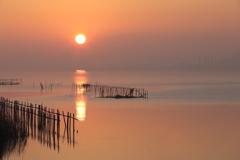 印旛沼・朝景 - 朝靄の旭 -