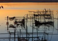 印旛沼・朝景 - 雑然と整然のハーモニー -