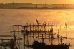 印旛沼・朝景 - 金色の朝霧 -