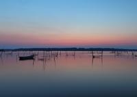 CANON Canon EOS 5D Mark IVで撮影した(印旛沼・朝景 - 花灯りの夜明け -)の写真(画像)