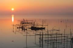 印旛沼・朝景 - 水鳥の朝デート -