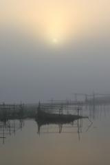 印旛沼・朝景 - 霧中の朝陽 -