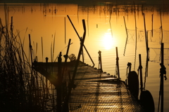 印旛沼・朝景 - 朝陽に輝く武骨な桟橋 -