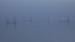 印旛沼・朝景 - 蒼銀の静寂 -