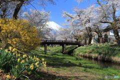 忍野村からの富士