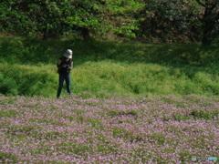 春風カメラマン