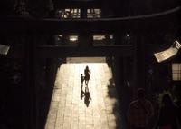 OLYMPUS E-620で撮影した(夕暮れ参道情景)の写真(画像)