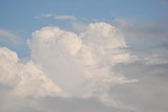 「空に恋をして」