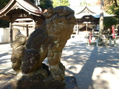 内々神社 狛犬