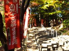 円福寺参道