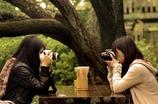 シンメなカメラ女子。