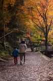 親子で紅葉散歩