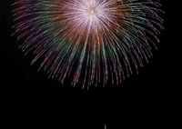 SONY ILCE-7M2で撮影した(大輪の花)の写真(画像)