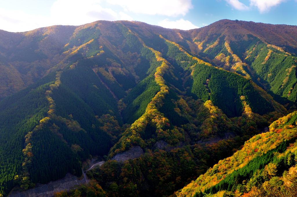 ナメゴ谷遠景