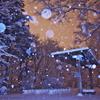 雪ふる森のステージ