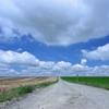 夏休み 白い雲を追いかけて