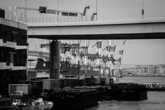 Yokohama monochrome