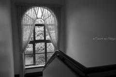 窓辺のあかり