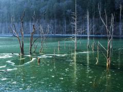 凍てつく碧い湖