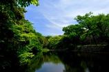 明石公園2014春