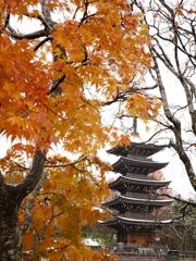 初冬の西方寺五重塔