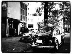 VW1300