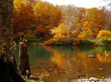 ドッコ沼秋景