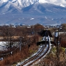 NIKON NIKON D90で撮影した風景(登っちゃう?あの山)の写真(画像)
